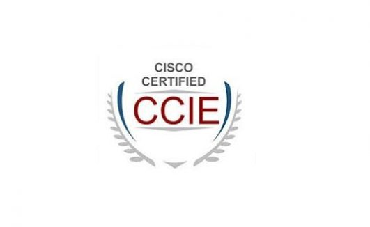 Cisco Certified Internetwork Expert Course