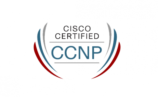 Cisco Certified Network Professional Course
